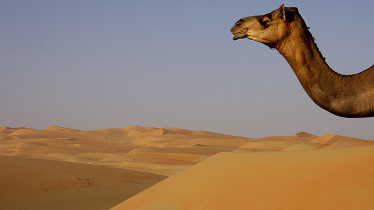 Emiratos Árabes Unidos creará una montaña artificial para que llueva