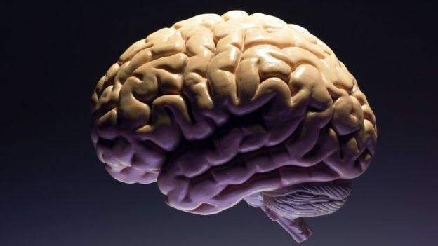 """""""Es importante saber que el cerebro te puede engañar"""""""