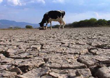 Prevén cortes de agua por intensa sequía y caída de reservas