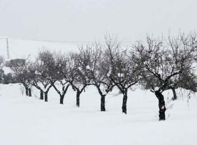 España también atravesada por temporal de lluvia y nieve