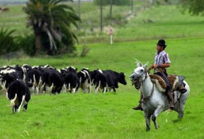 Por primera vez en su historia, Uruguay deja de vender sus fronteras