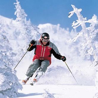 Canadá quebró el maleficio y se quedó con todo el oro al ganar los Juegos Olímpicos de Invierno en Vancouver