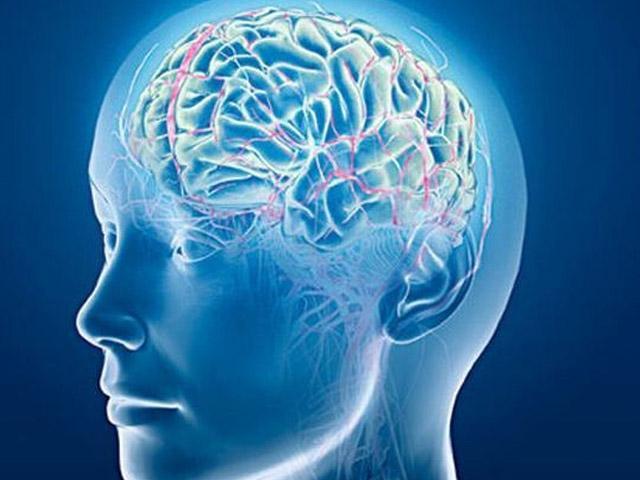 Revelan el secreto de la inteligencia: hacer más con menos