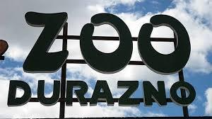 Un hombre, su esposa y un niño mataron dos carpinchos del zoo de Durazno
