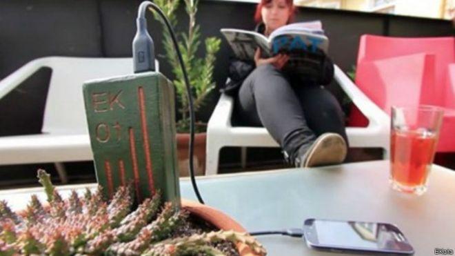 El invento chileno para recargar el celular conectándolo a una planta