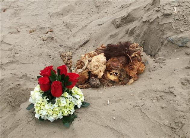 Descubren una momia prehispánica cerca de transitada avenida de Lima