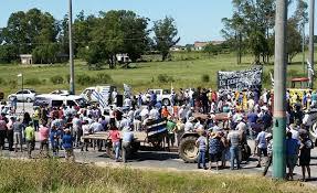 Dejarán de llorar: Venezuela terminará de pagar deuda con tamberos uruguayos