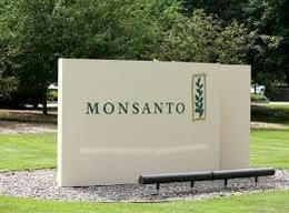 Senador blanco denuncia abuso de posición dominante de Monsanto
