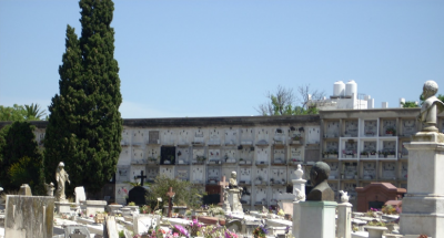 Intendencia de Montevideo eliminará recipientes de cementerios para combatir mosquito Aedes aegypti