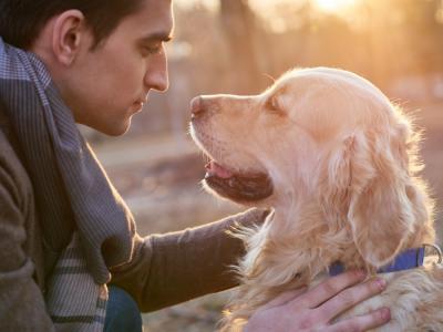 El origen de la amistad entre perros y humanos, según la ciencia