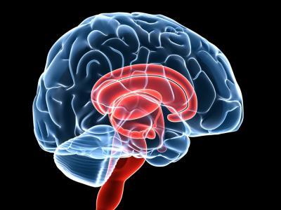 Tener estudios universitarios podría aumentar el riesgo de tumor cerebral, sugiere investigación