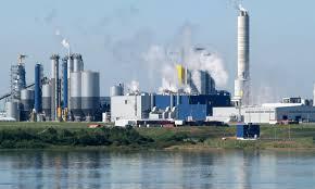 UPM anunció que su segunda planta de celulosa estará en el centro del país