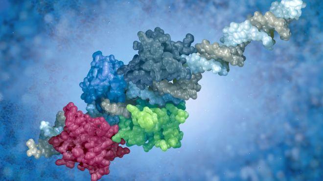 Cómo los virus nos han ayudado a convertirnos en lo que somos hoy