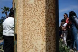 Mexicanos deportados, el fin del sueño americano que Trump quiere multiplicar