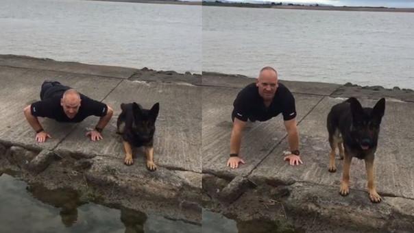 Un perro hace ejercicios como parte de una campaña contra el suicidio