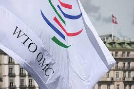 Lea auto de procesamiento del uruguayo ex funcionario de la Organización Mundial del Comercio