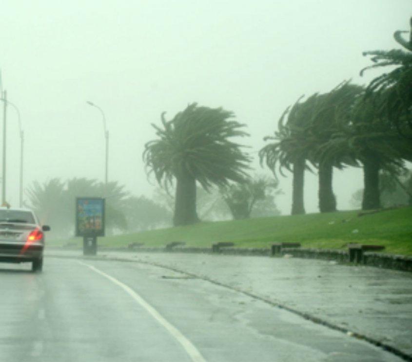 """Que no cunda el pánico en Uruguay....Experto considera que el ciclón será """"un poquito menos intenso"""" que el de 2005"""