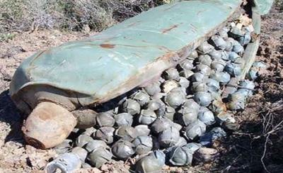 Rusia y Siria han usado municiones de racimo en el país árabe, según HRW