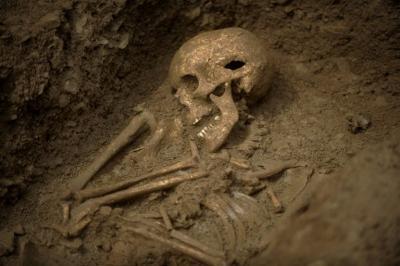 Descubren en Francia una necrópolis merovingia con al menos 600 esqueletos