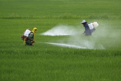 Cambio climático amenaza la agricultura de América Latina