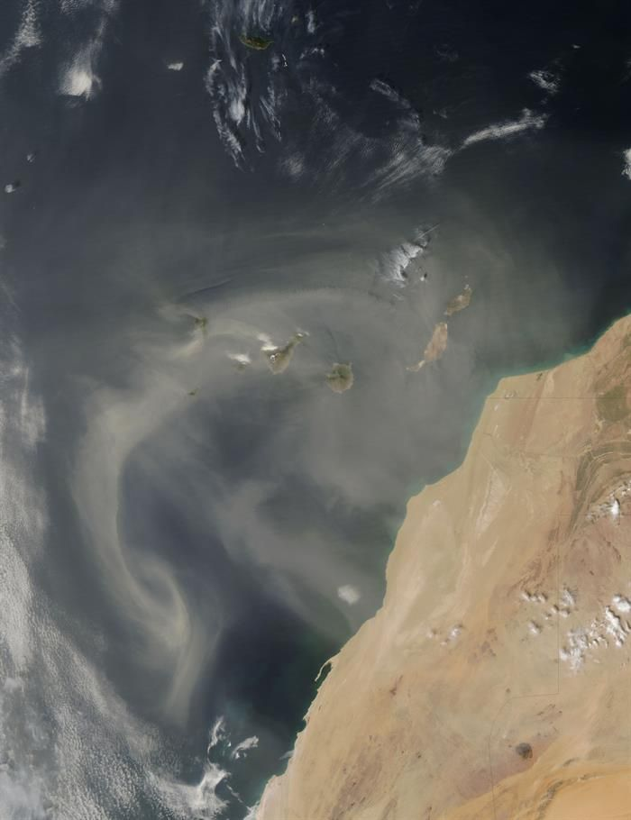 El océano se adapta a la escasez y consigue que el hierro (si alimenta) flote