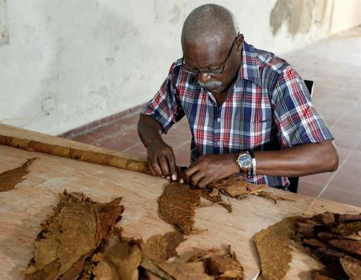 Torcedor cubano bate récord y sigue construyendo el mayor tabaco del mundo