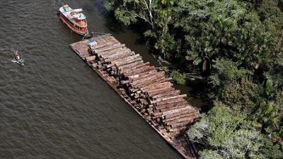 """""""Ganó el medioambiente"""": Fue detenido proyecto de presa en el corazón de la Amazonia brasileña"""