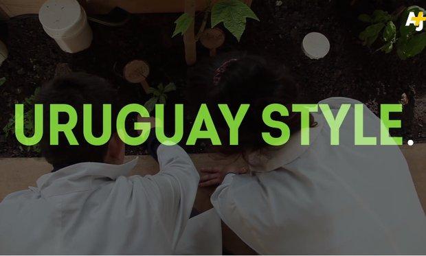 Cadena Al Jazeera pone como ejemplo escuela autosustentable de Jaureguiberry