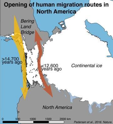 Los primeros pobladores llegaron a América en balsa hace 14.700 años