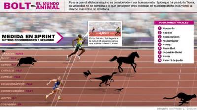 ¿Cuál sería el resultado si Usain Bolt compitiera con estos animales?
