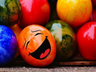 No estamos programados para ser felices, sino para buscar la felicidad