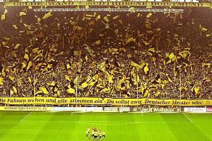 """Los secretos del Borussia Dortmund, un club """"modelo"""" con el mejor promedio de público en el mundo"""