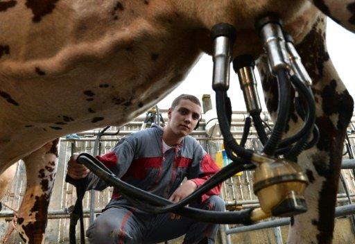 La leche con burbujas: el refresco que puede hacer multimillonarios a unos granjeros daneses