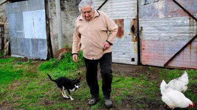 A pedido suyo... Mujica declara por caso Pluna